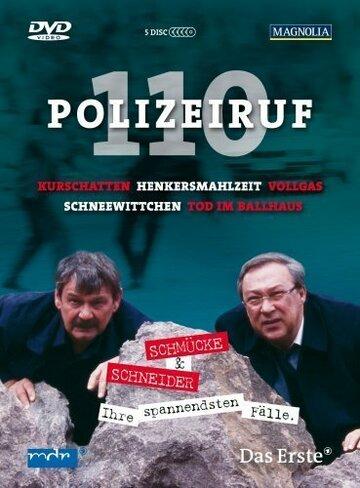 Телефон полиции – 110 (1971) полный фильм