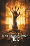 Пробуждающийся лес
