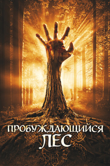 Фильм Пробуждающийся лес
