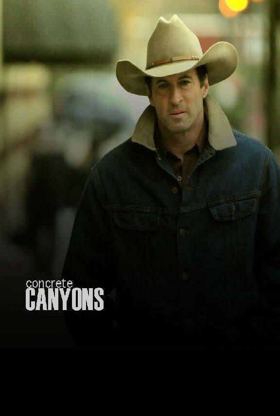 Бетонные ущелья / Concrete Canyons (Терри Ингрэм) [2009, Драма., SATRip] DVO