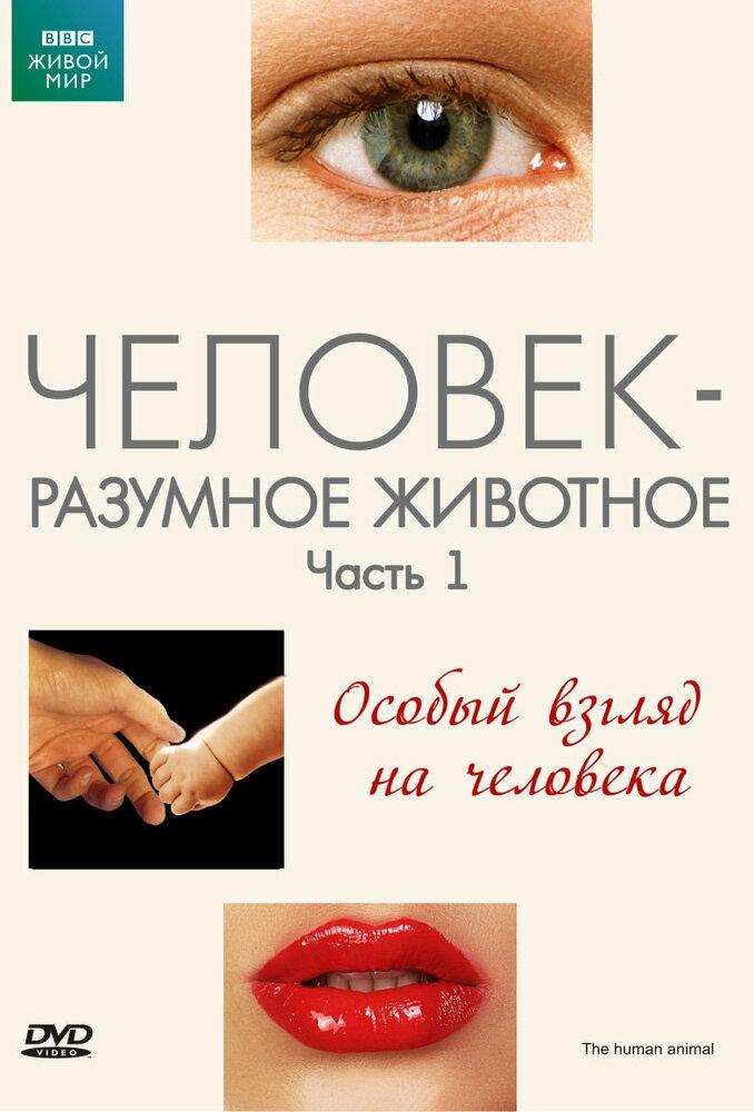 KP ID КиноПоиск 592356