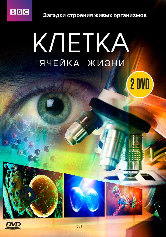 KP ID КиноПоиск 659961