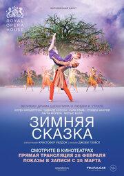 Зимняя сказка (2014)