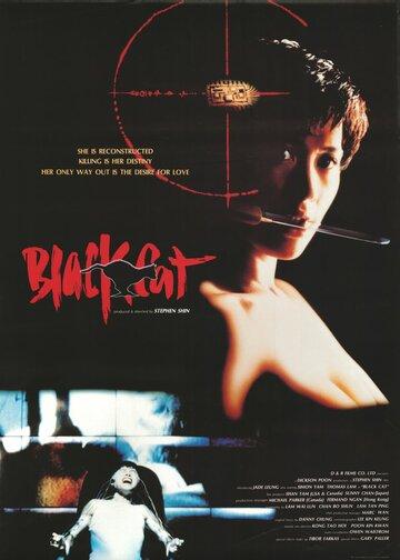 Черная кошка (1991)