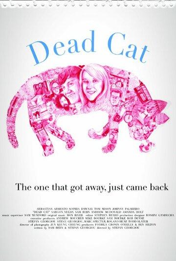 Мертвый кот