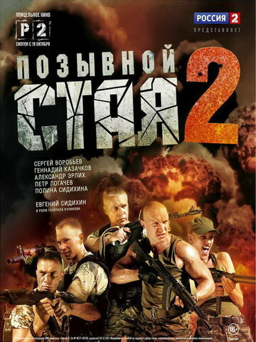Позывной 'Стая' 2 (Pozyvnoy 'Staya' 2)