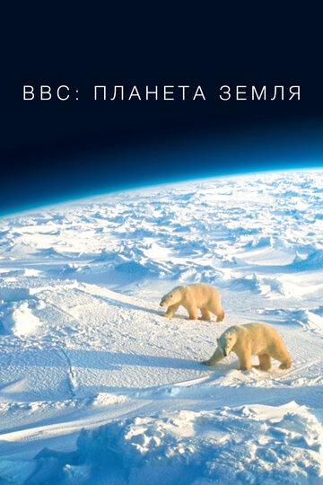 Мини-сериал BBC: Планета Земля