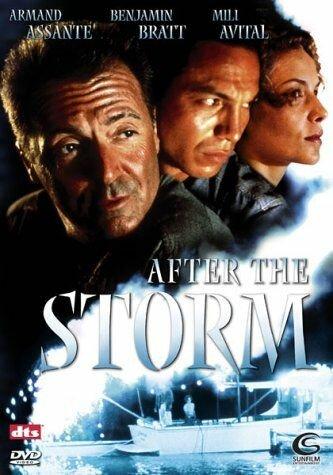 После шторма (2001)