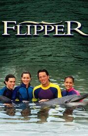 Смотреть онлайн Флиппер