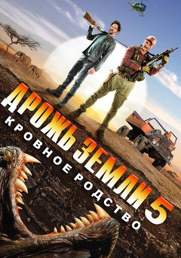 Кино АмандаО