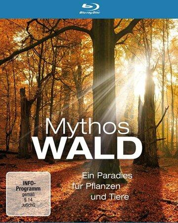 Мифы леса