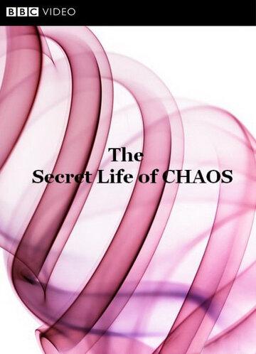 BBC: Тайная жизнь хаоса смотреть онлайн