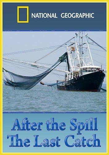 После разлива нефти: Последний улов