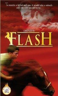 Вспышка (1997)