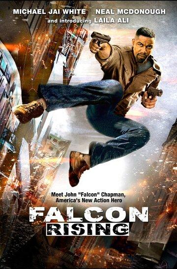 Восхождение Сокола (Falcon Rising)