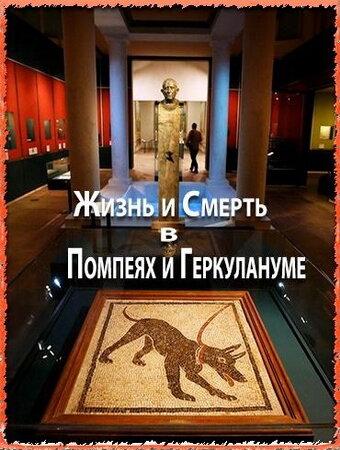 Жизнь и смерть в Помпеях и Геркулануме 2013