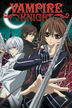 Рыцарь-вампир 1-2 сезон
