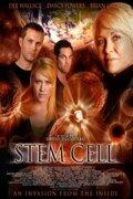 (Stem Cell)