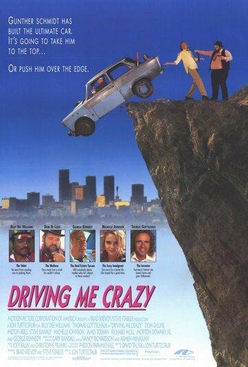 Сумасшедшая история (Driving Me Crazy)