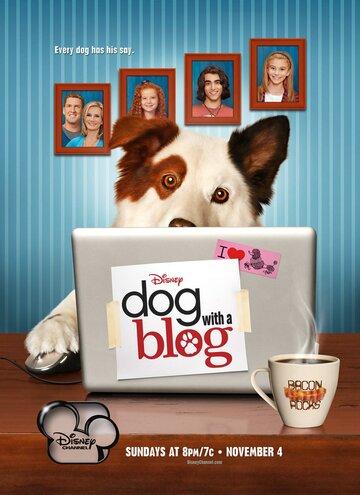 Собака точка ком 2012