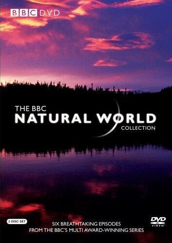 BBC: Живой мир (1983) полный фильм онлайн