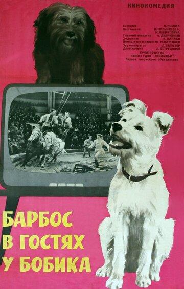 Барбос в гостях у Бобика (1964) полный фильм онлайн