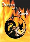 Дракон и ястреб (Dragon and the Hawk)