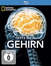 Испытайте свой мозг (2011)
