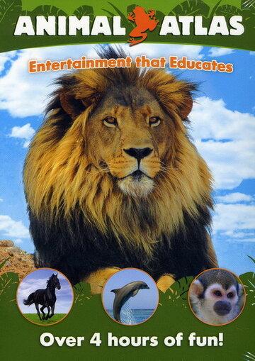 Атлас животного мира (2004) полный фильм