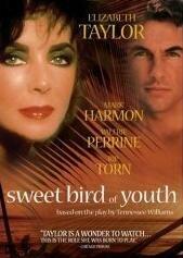 Сладкоголосая птица юности (1989)