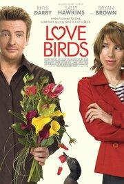 Смотреть онлайн Любовные пташки