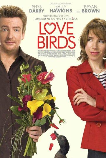 Любовные пташки (2011)