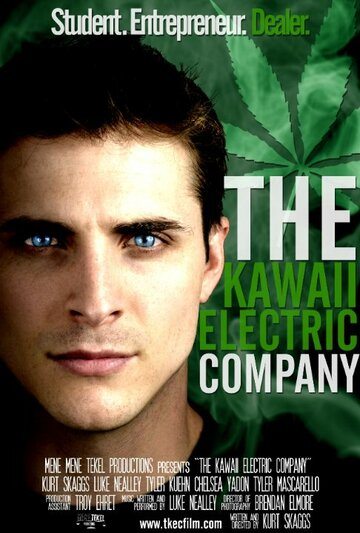 (The Kawaii Electric Company)