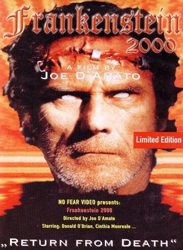 Франкенштейн 2000 (1991)