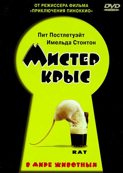 Мистер крыс - смотреть онлайн