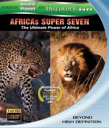 Великолепная семерка Африки