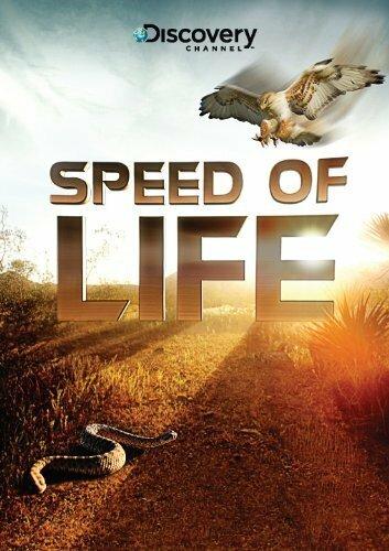 Discovery: Скорость жизни 2010