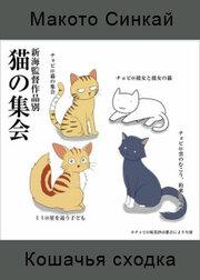 Смотреть онлайн Кошачья сходка