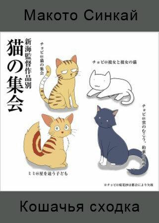 Кошачья сходка
