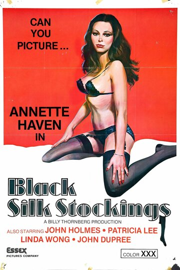 смотреть онлайн черные шелковые чулки