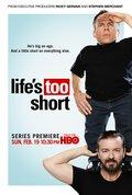 Жизнь так коротка (2011)