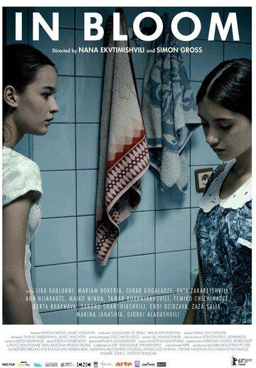 Длинные светлые дни (2013)