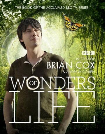 ������ ����� (Wonders of Life)