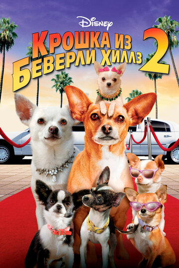 ������ �� �������-����� 2 (Beverly Hills Chihuahua 2)