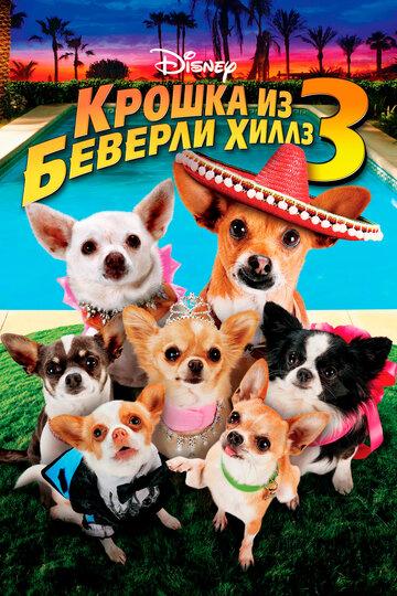 Крошка из Беверли-Хиллз 3 (Beverly Hills Chihuahua 3: Viva La Fiesta!)
