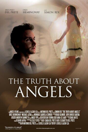 Правда об ангелах