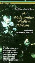 Сон в летнюю ночь (1982)