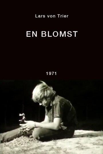 Цветок (1971)
