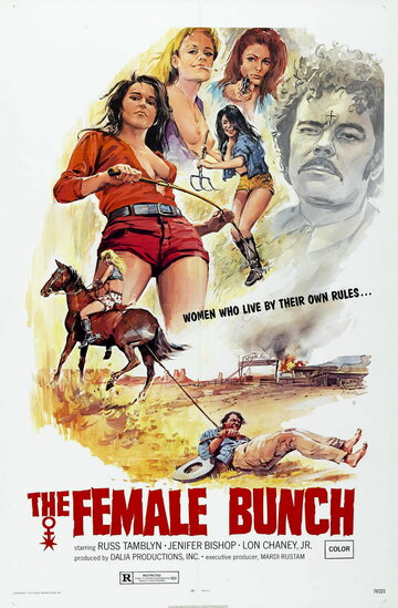 Женская компания (1971)