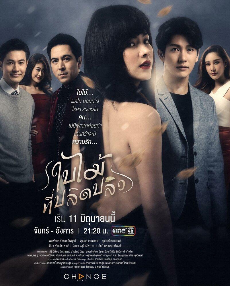 1301876 - Опавший лист ✦ 2019 ✦ Таиланд